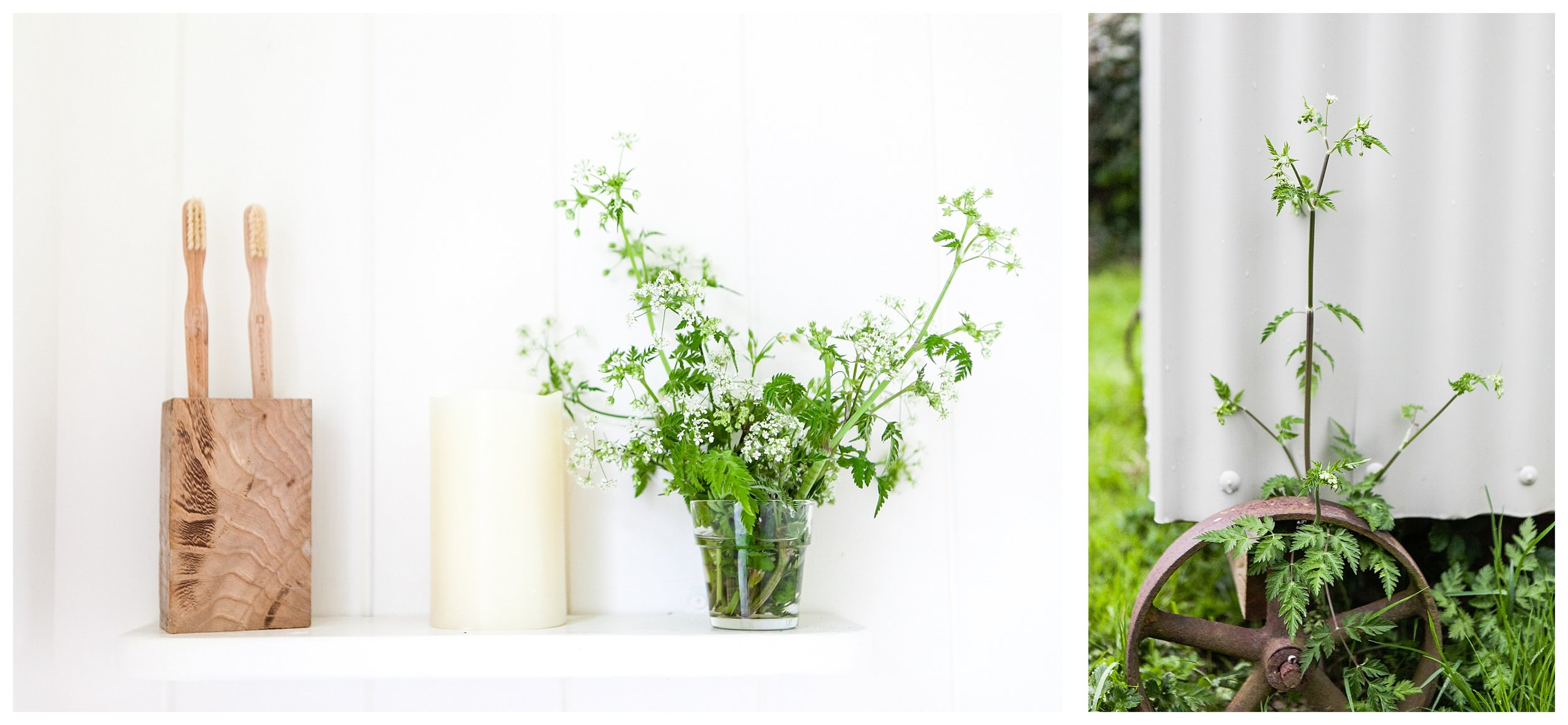 Natural brand photography by Katie Spicer