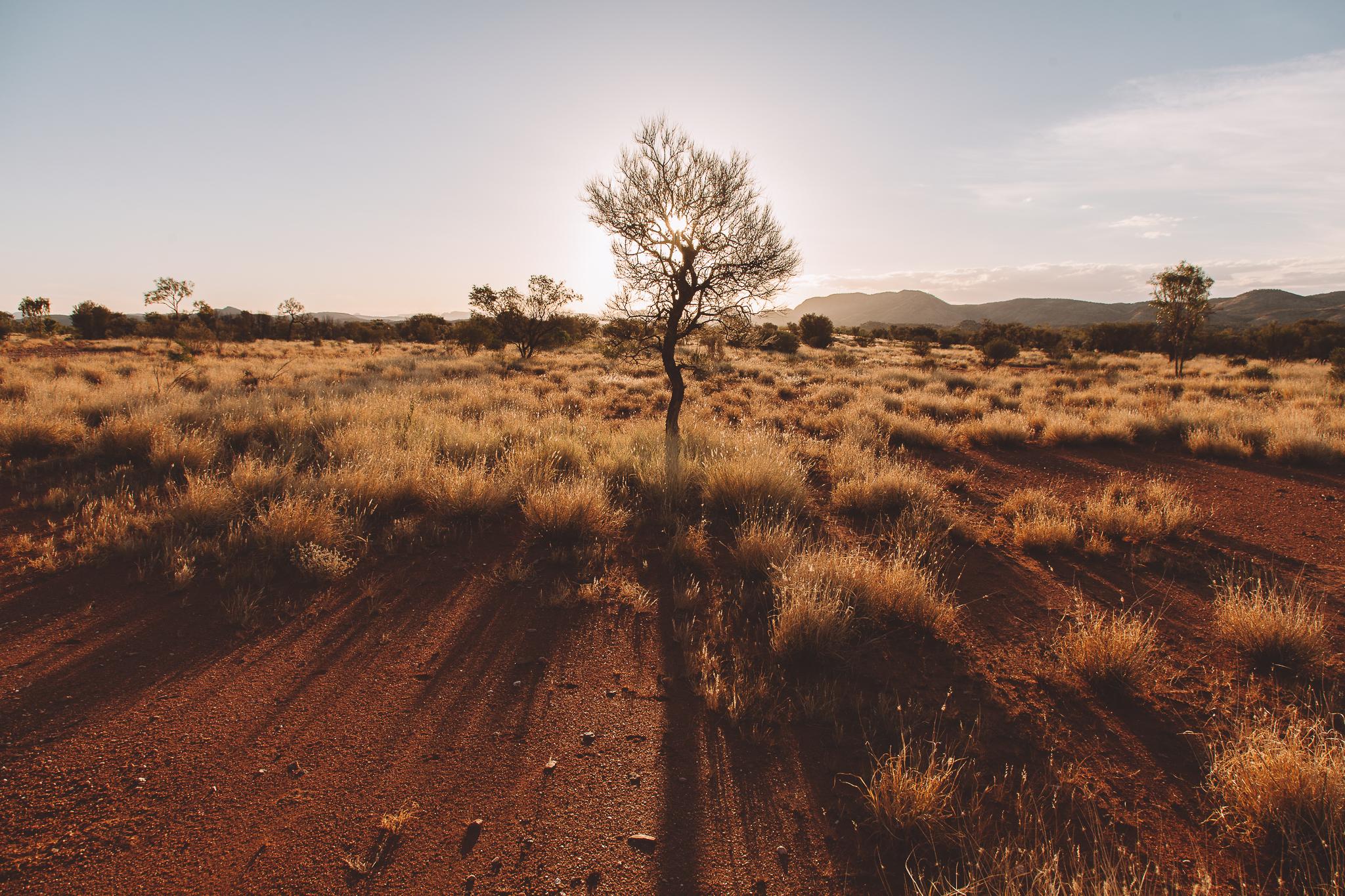 Alice Springs (4 of 71).jpg