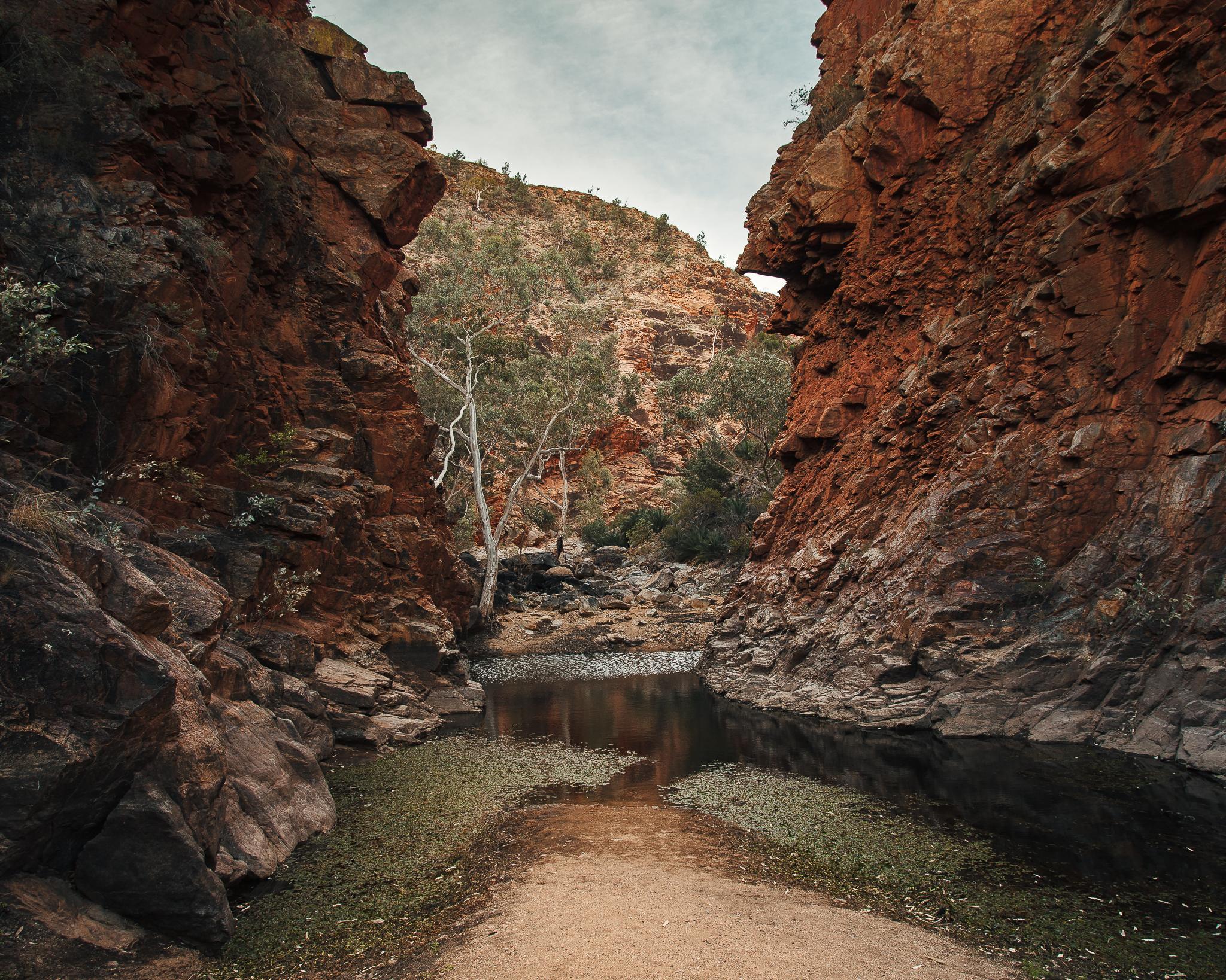 Alice Springs (22 of 71).jpg