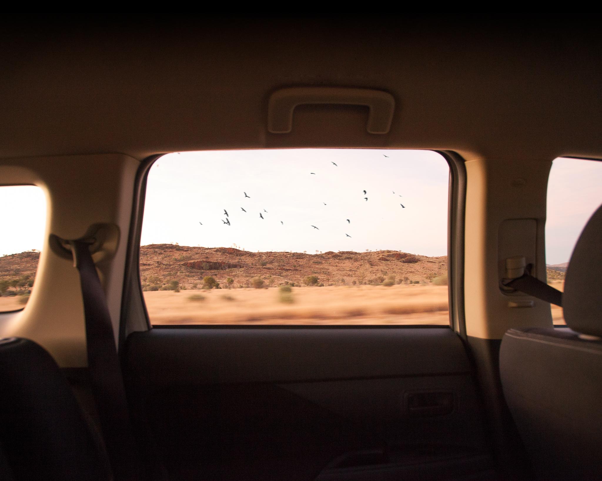 Alice Springs (29 of 71).jpg