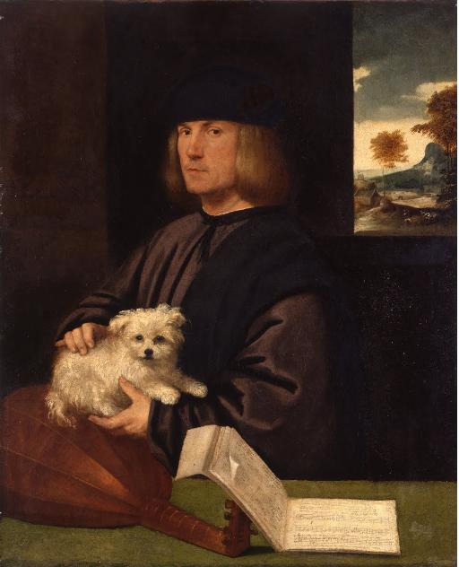 Baldassare Donato Giovanni Carianibetween 1540 - 1547.png
