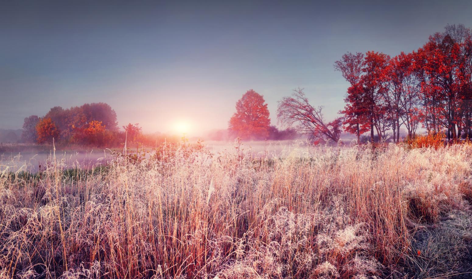 November -