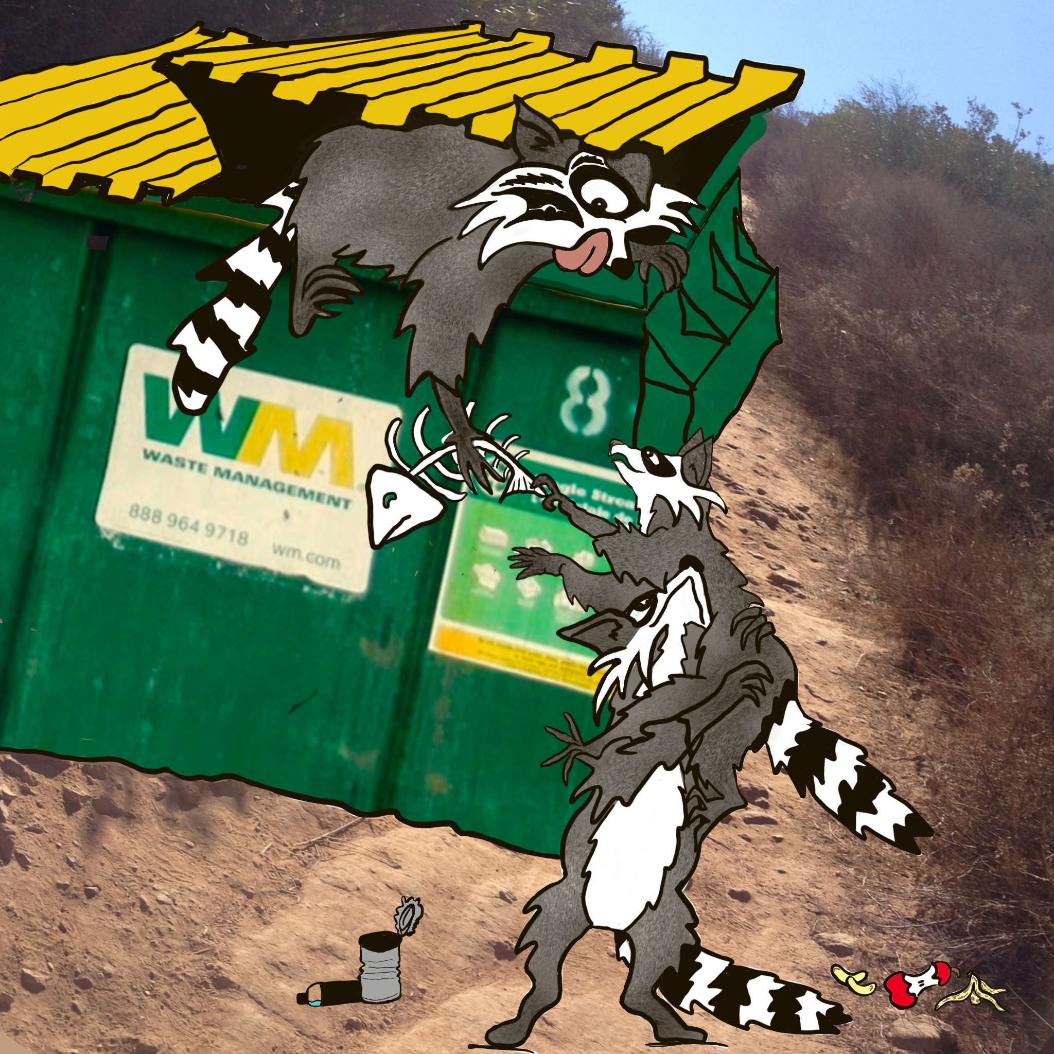 Raccoons Find a Way
