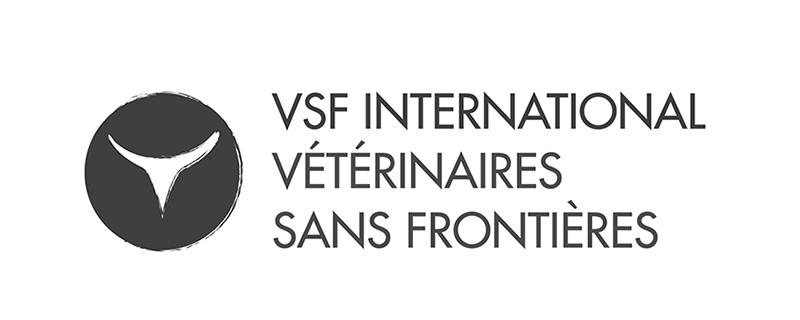 vsf.png