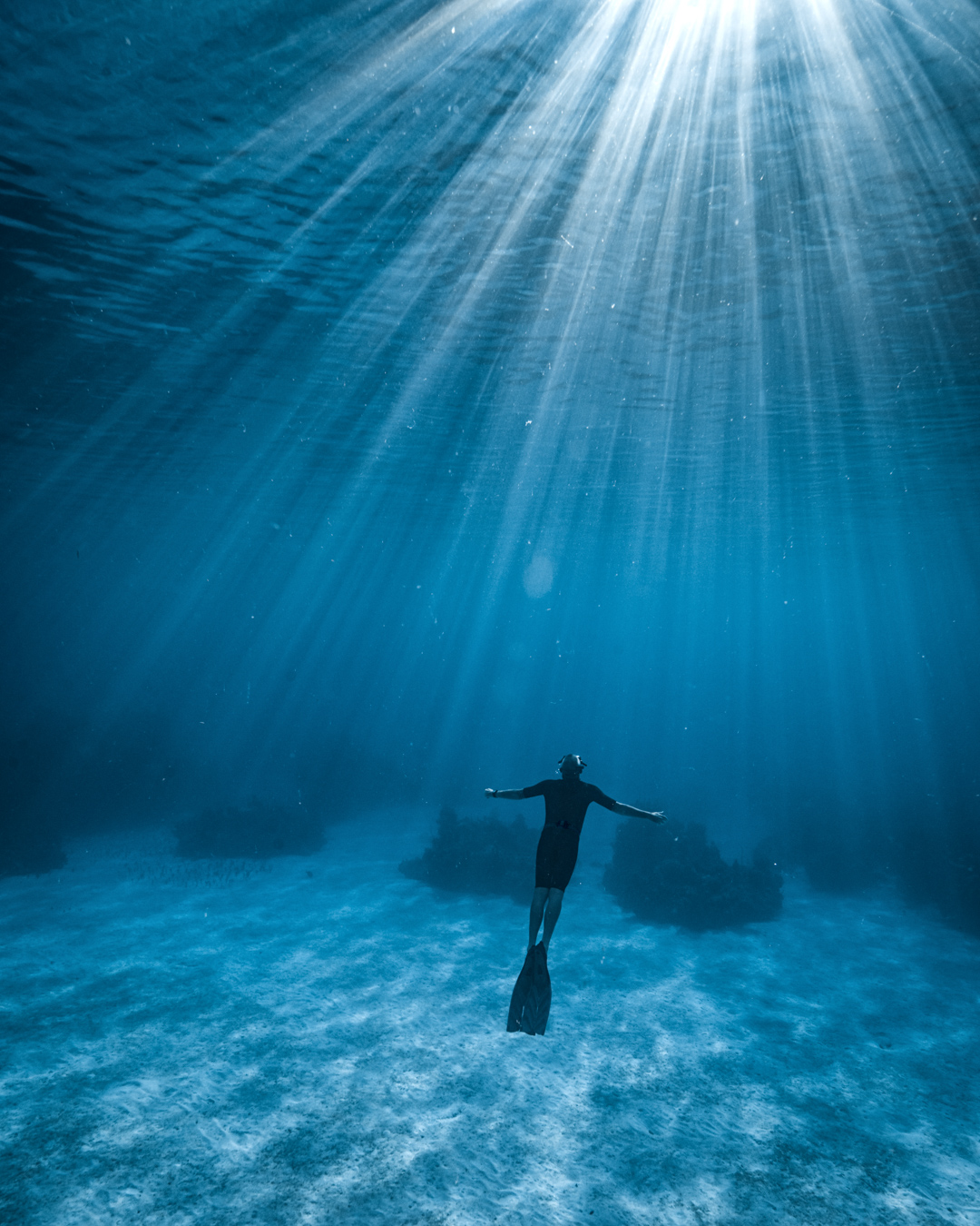 Freediving in the Bahamas.jpg