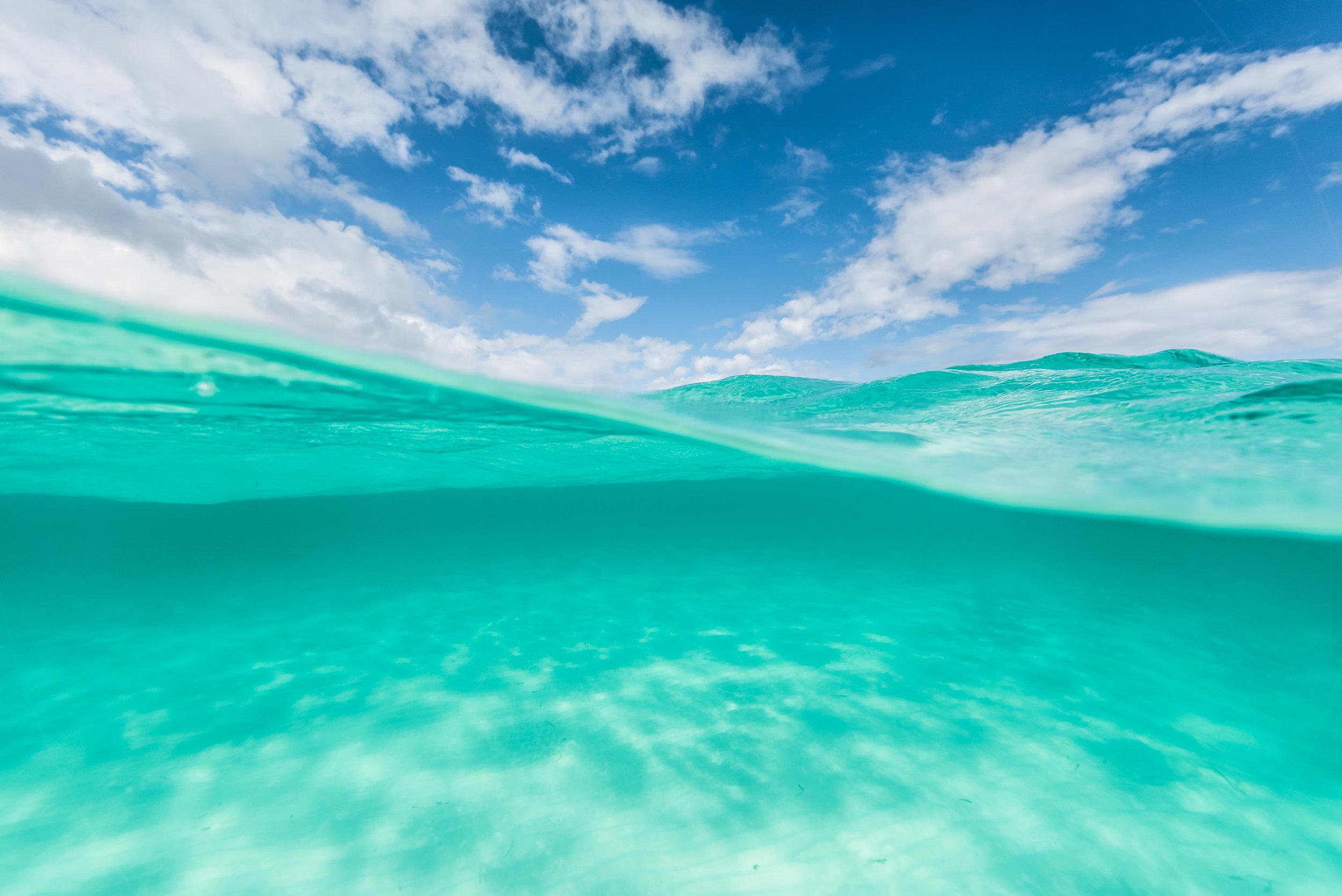Tropical paradise_tone curve image.jpg