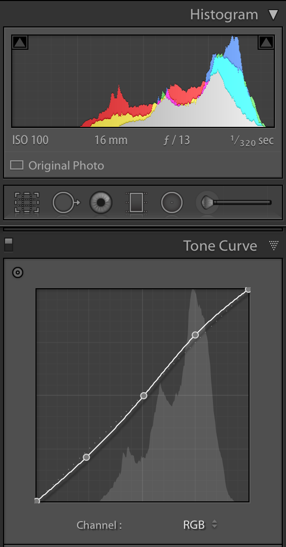 Tropical paradise edit_tone curve panel.png