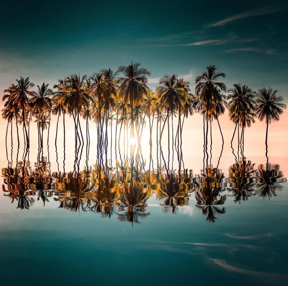 Brandon Verdura - favourite ocean images of 2019.png