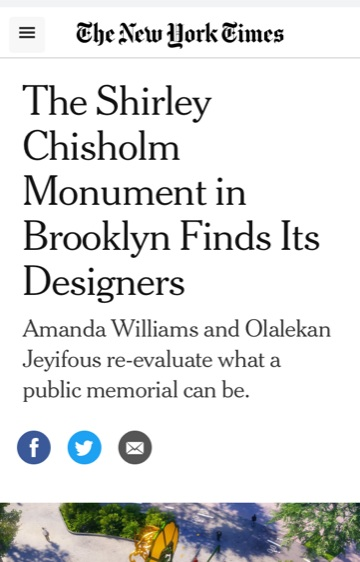 Client Amanda Williams in the New York Times