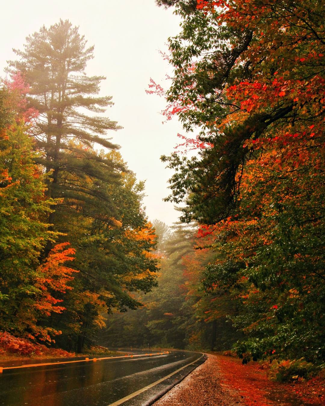 kancamagus highway in new hampshire oct 8, 2017