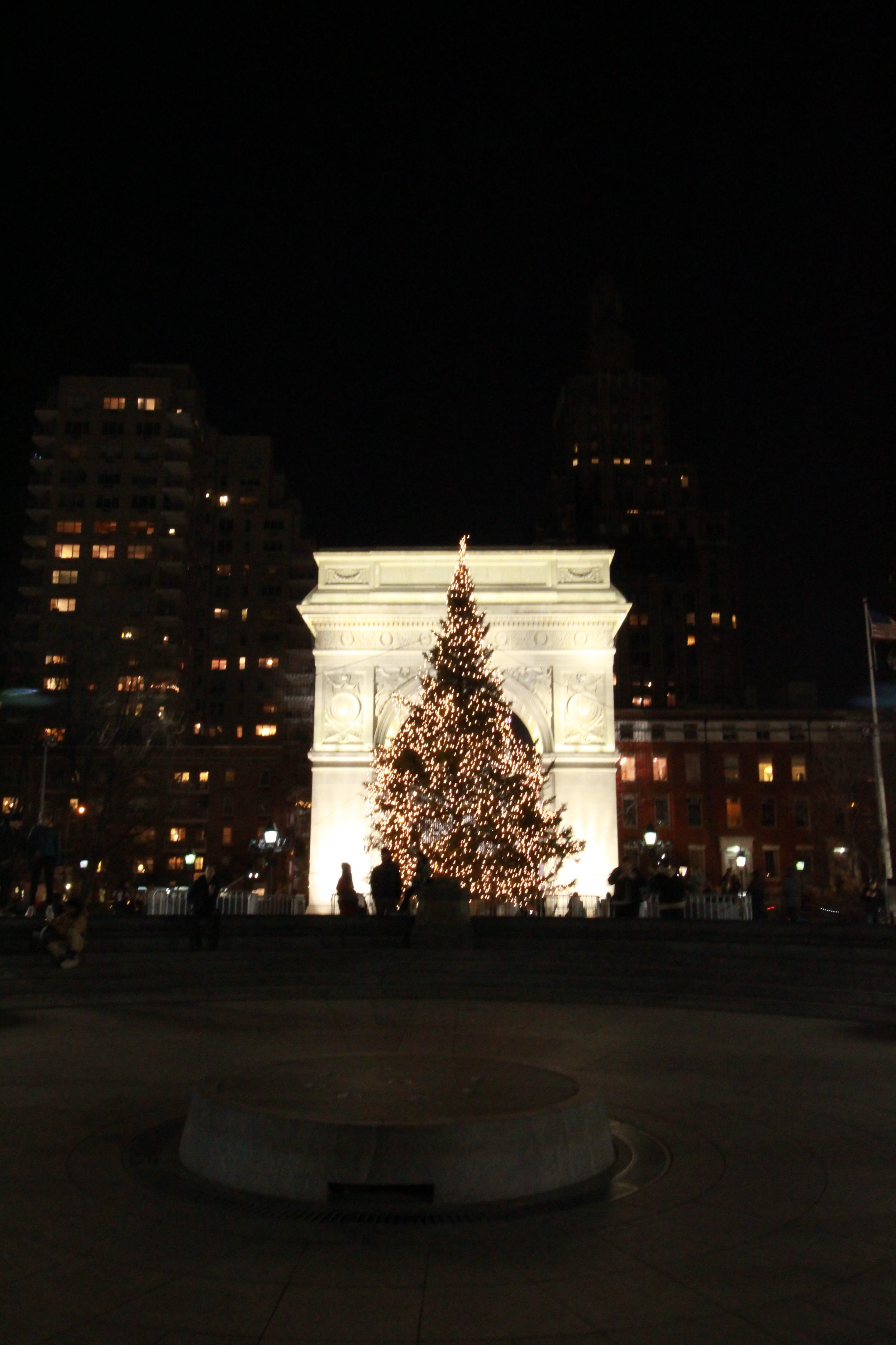Beautifully framed Washington Square Park Christmas Tree.