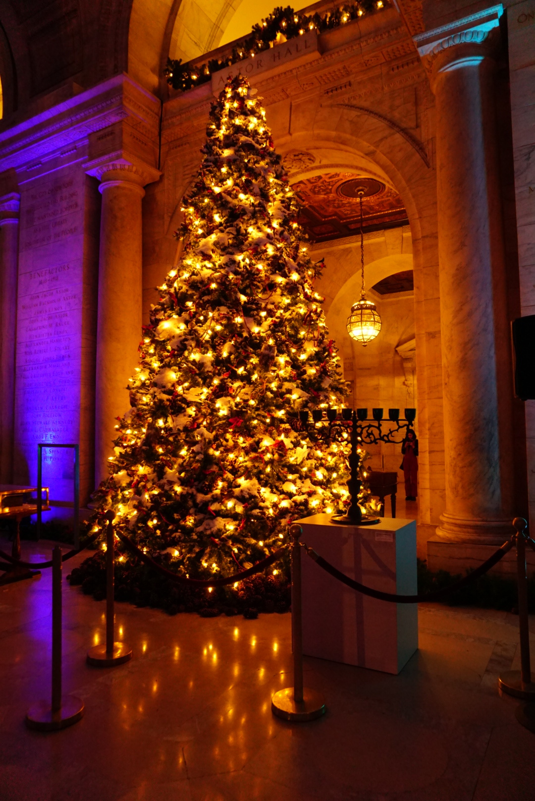 New York Public Library    and it's beautiful Christmas tree this year.