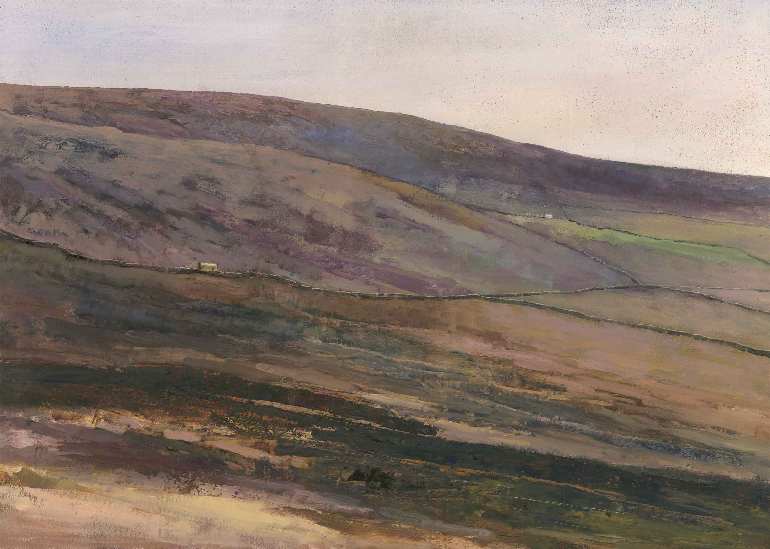 Brown Moor ( Edition of 95 )
