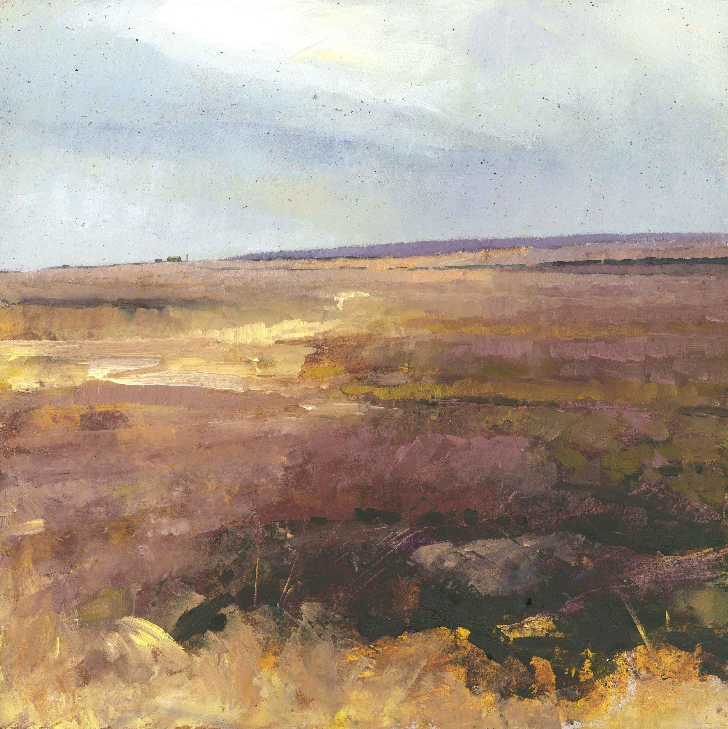 Summer Moor ( Edition of 95 )