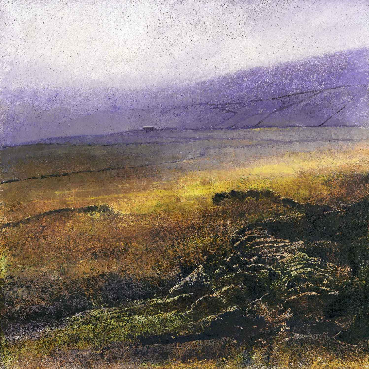 Lilac Hills ( Edition of 195 )