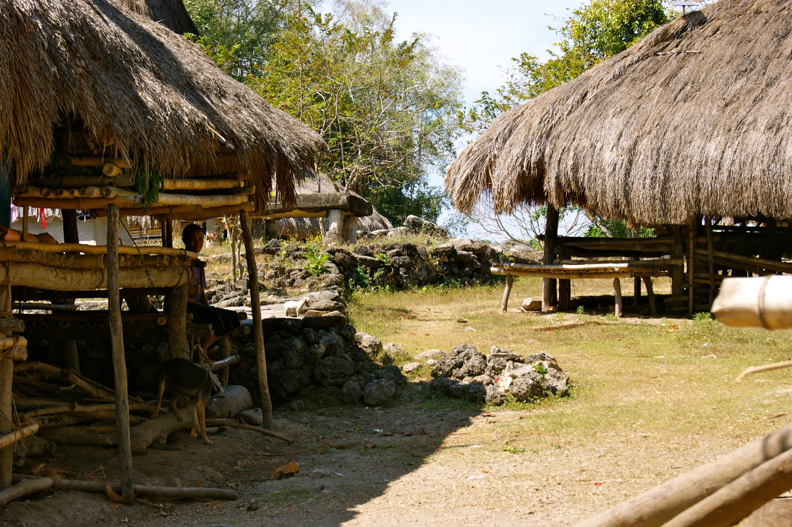 Traditional houses in a Sumbanese village.