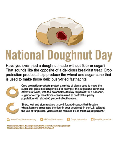National Donut Day Image