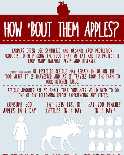 How 'Bout Them Apples Image