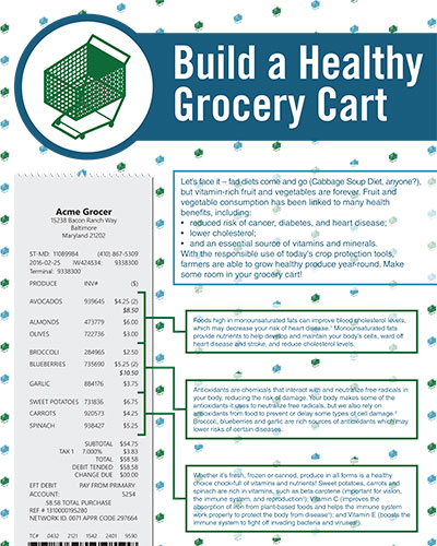 Build a Healthy Grocery Cart Image