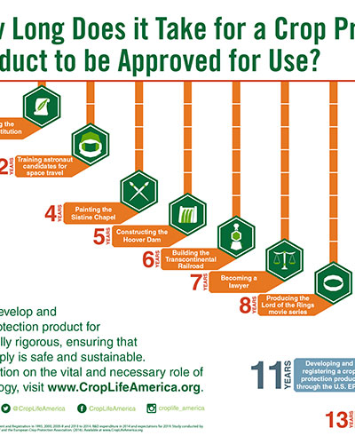 How Long Does it Take to be Approved for Use Image