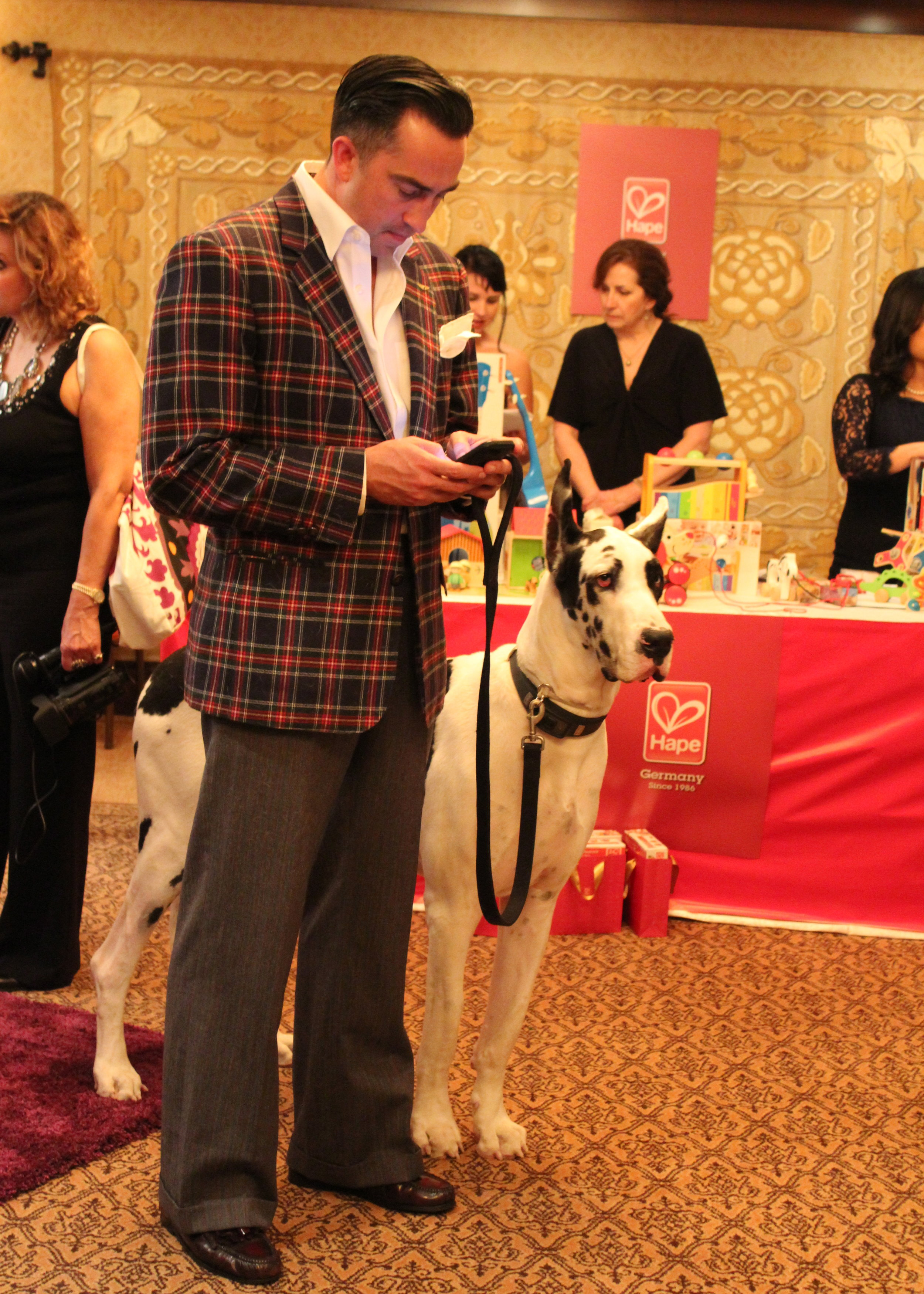 Unfortunately, this adorable Great Dane wasn't a freebie.