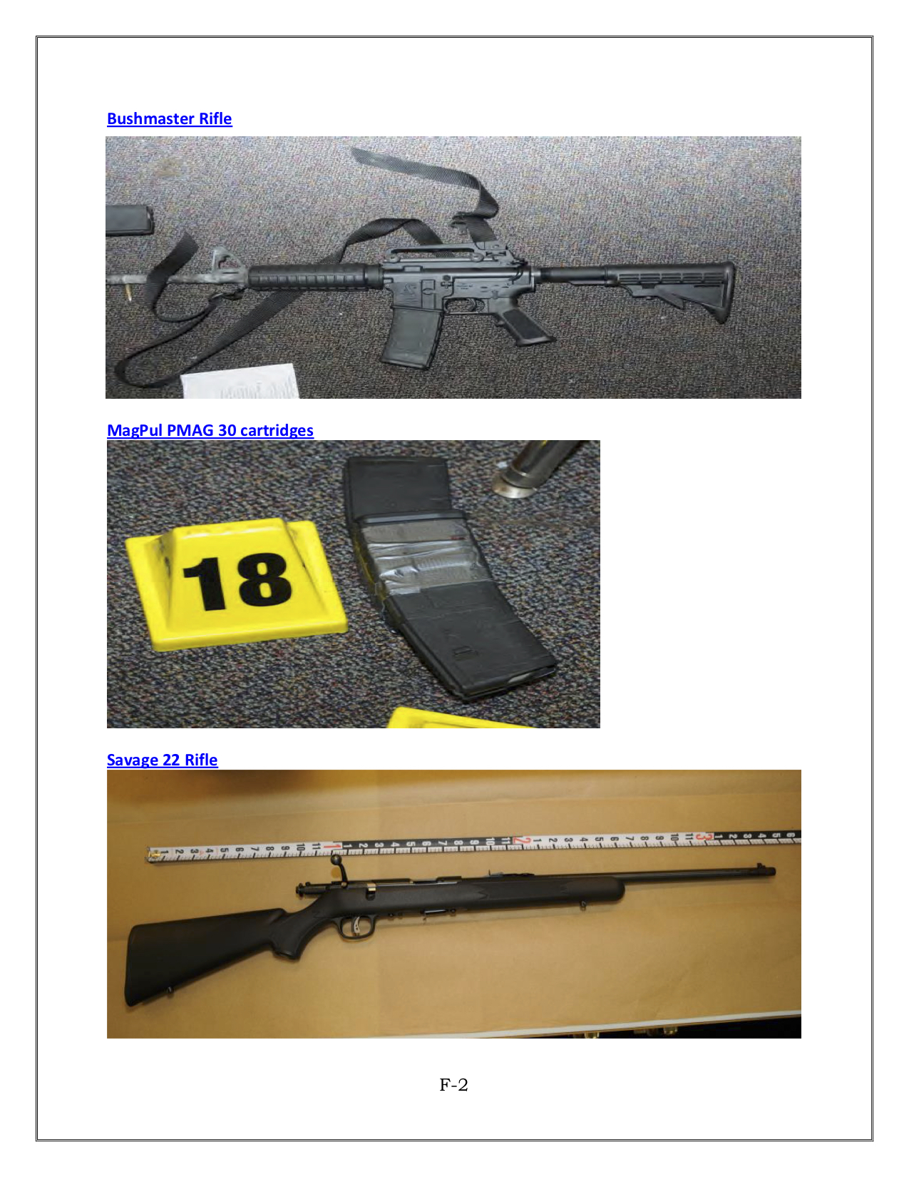 The assault rifle used in the school, a magazine and the rifle used against Lanza's mother (source: Sandy Hook Advisory Commission)