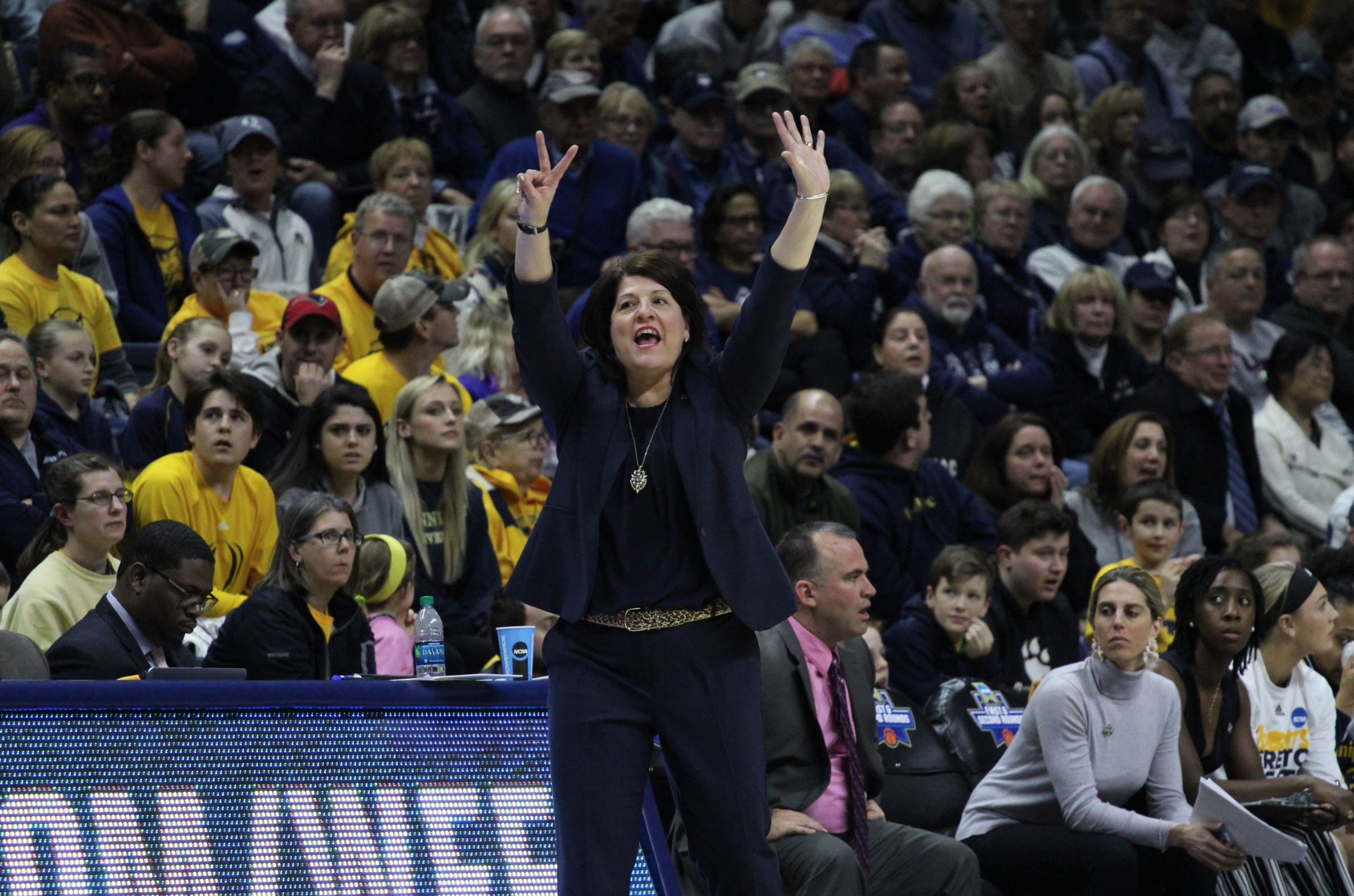 Tricia Fabbri on the sidelines of Quinnipiac women's basketball NCAA tournament game against UConn in 2018. Photo Courtesy: Liz Flynn/ Quinnipiac Bobcats Sports Network