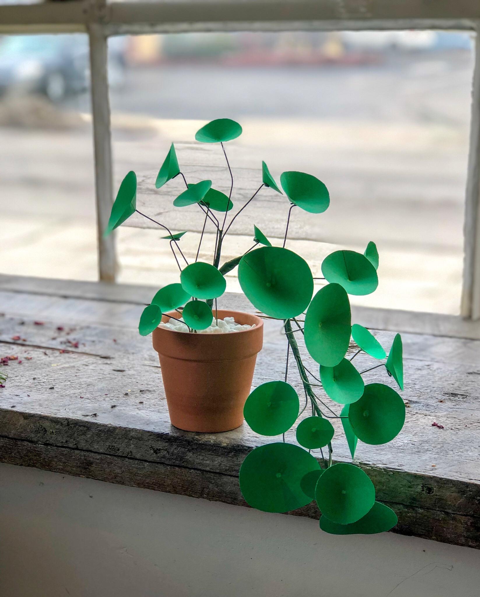 Paper Plants.JPG