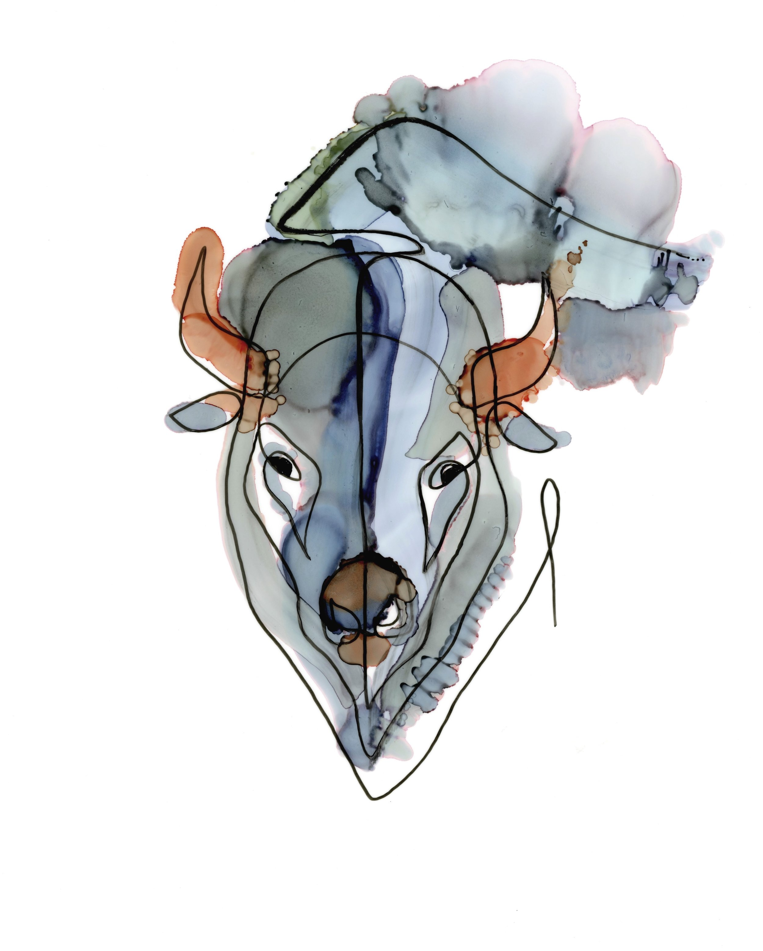 blue-buffalo.jpg