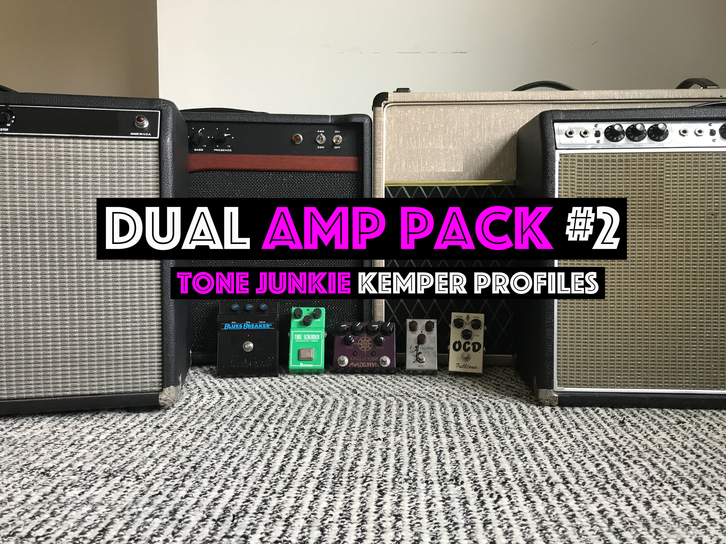 Dual Pack #2! - The Dual Amp #2 Pack from Tone Junkie captures the sound of some of the most iconic amp pairings heard on Sunday Mornings and Friday nights. If you have every wished the ACE 30 pack has a bit more oomph in the low end check out the AC30 Beauty profile set. If you are looking for American and British high end competing for your attention check out the ACE30 Rolex set. And of course how about the signature amp pairings and signature settings from some of the P&W Elite. Check out the