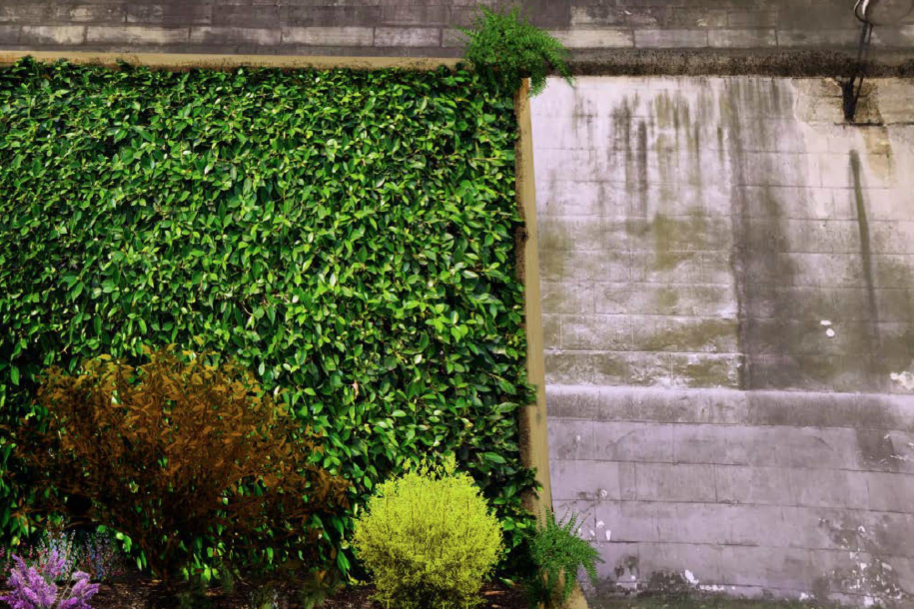 Jardin Ouvert-01.png