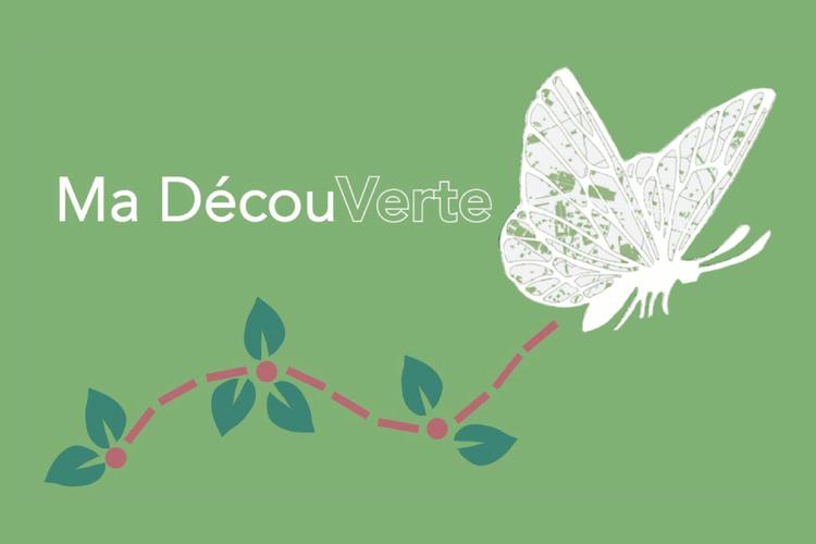 Ma Decouverte.png