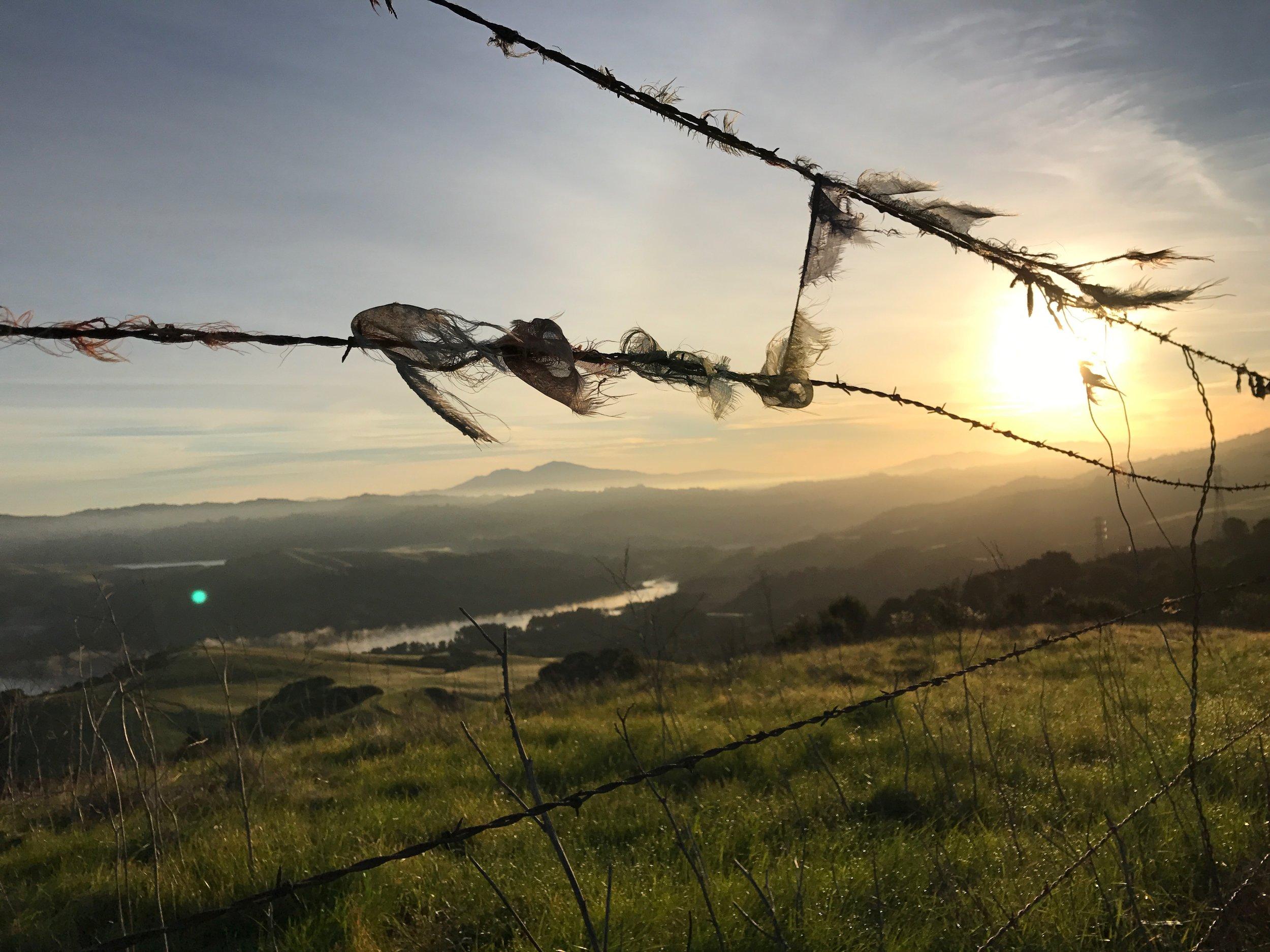 mak-warep • our land
