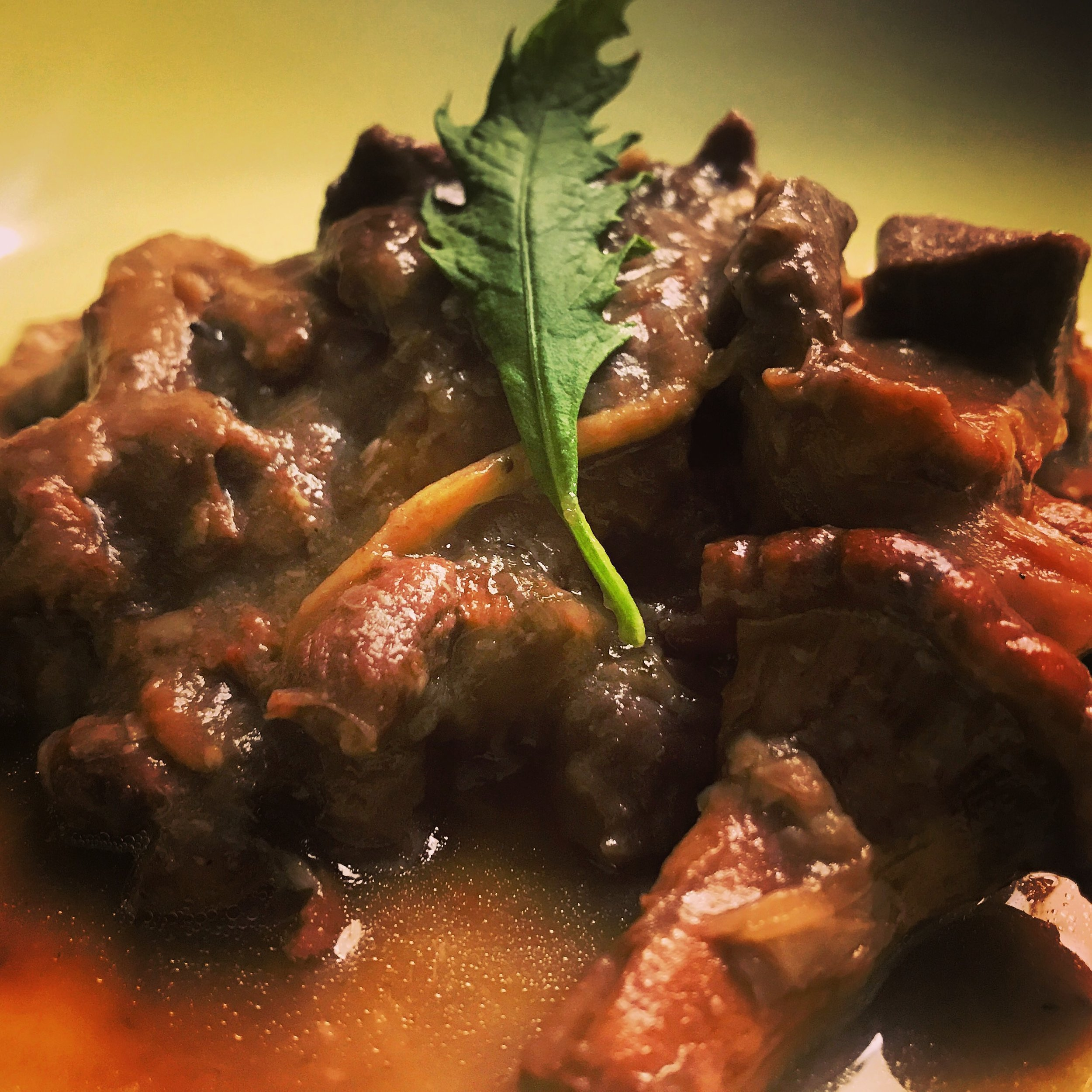 ṭoot tawwa-sii • venison stew