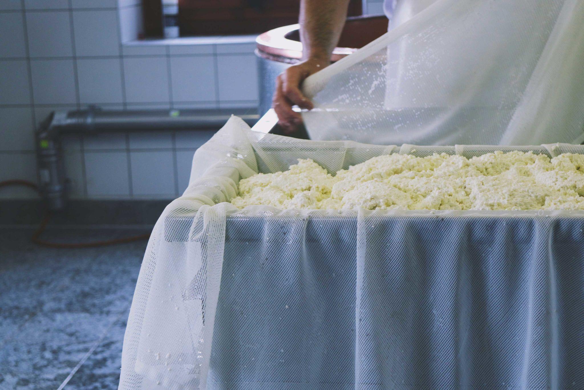Balavaux-Switzerland-Cheese-making.jpg