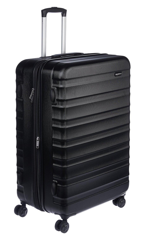 Amazon basics luggage.jpg