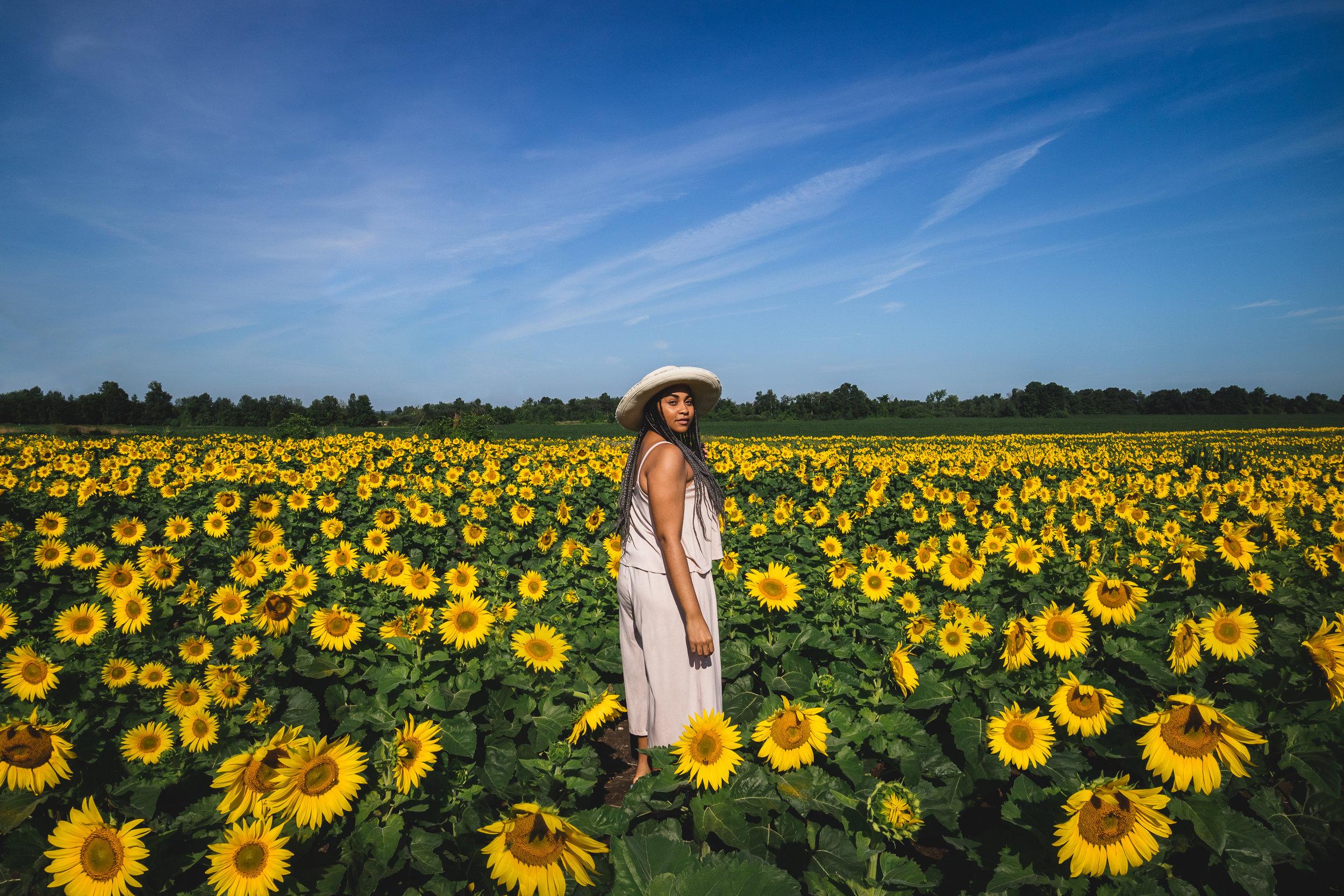Elaisha Jade Sunflower Field FordEcosport