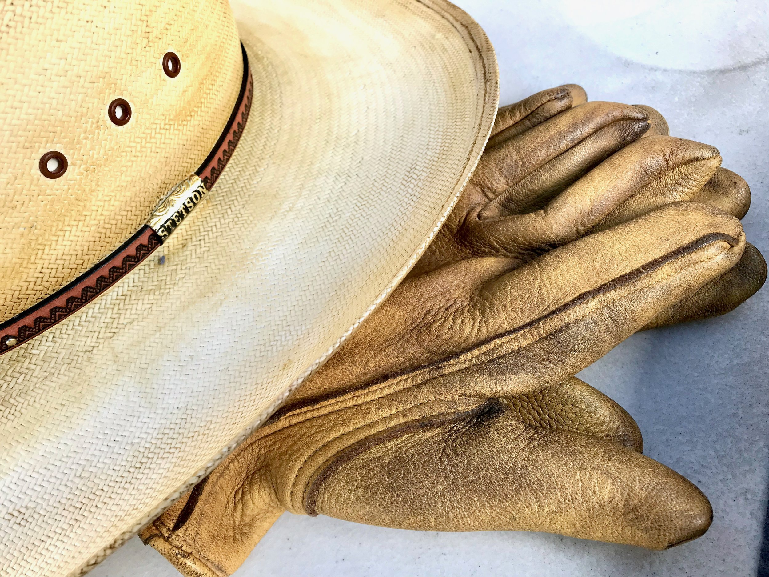 Hat and gloves.