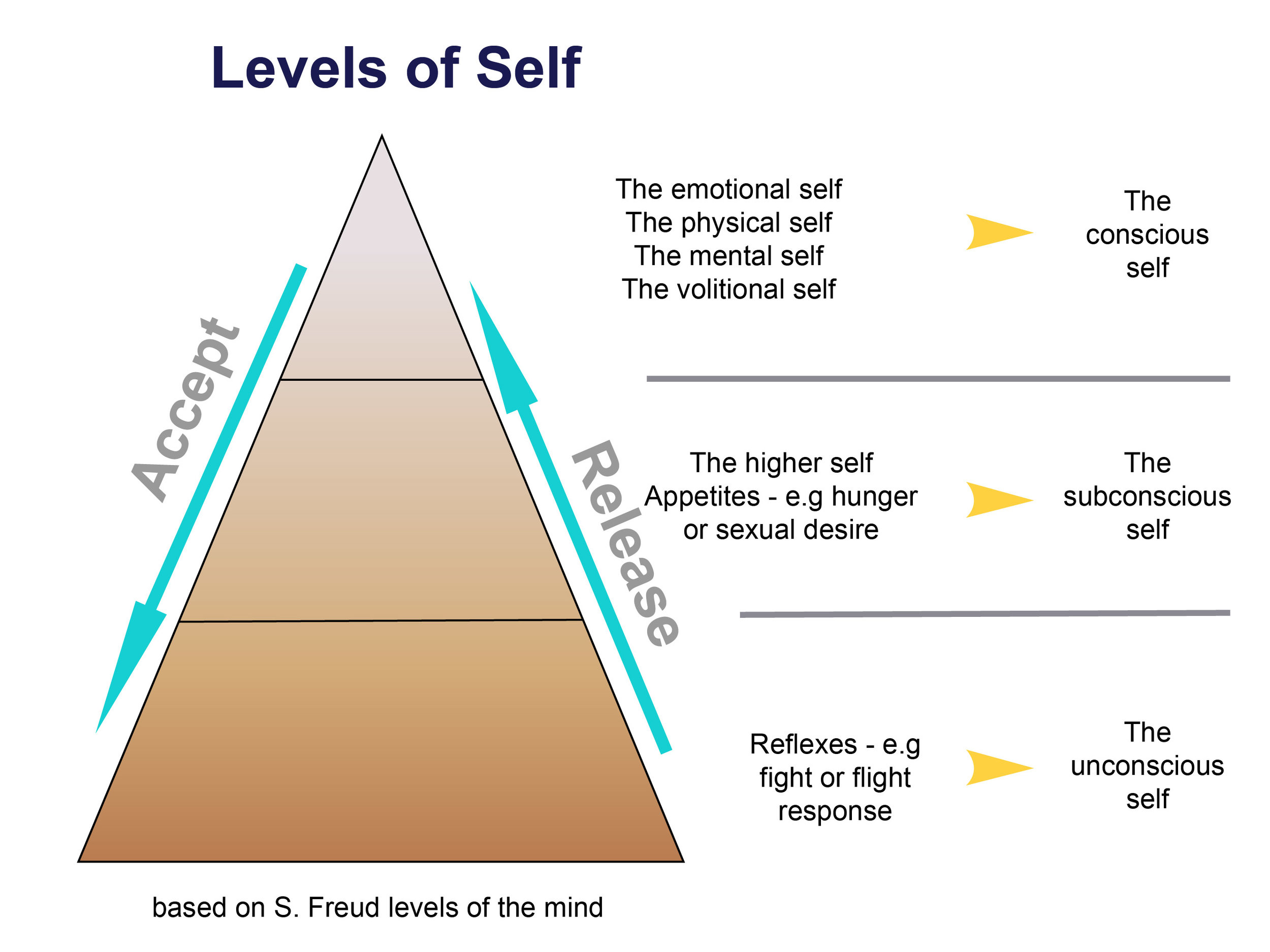 This diagram based on the work of Sigmund Freud shows how the levels of self govern the different parts of our behaviour. Change has to work with the levels of self if it is going to stick.