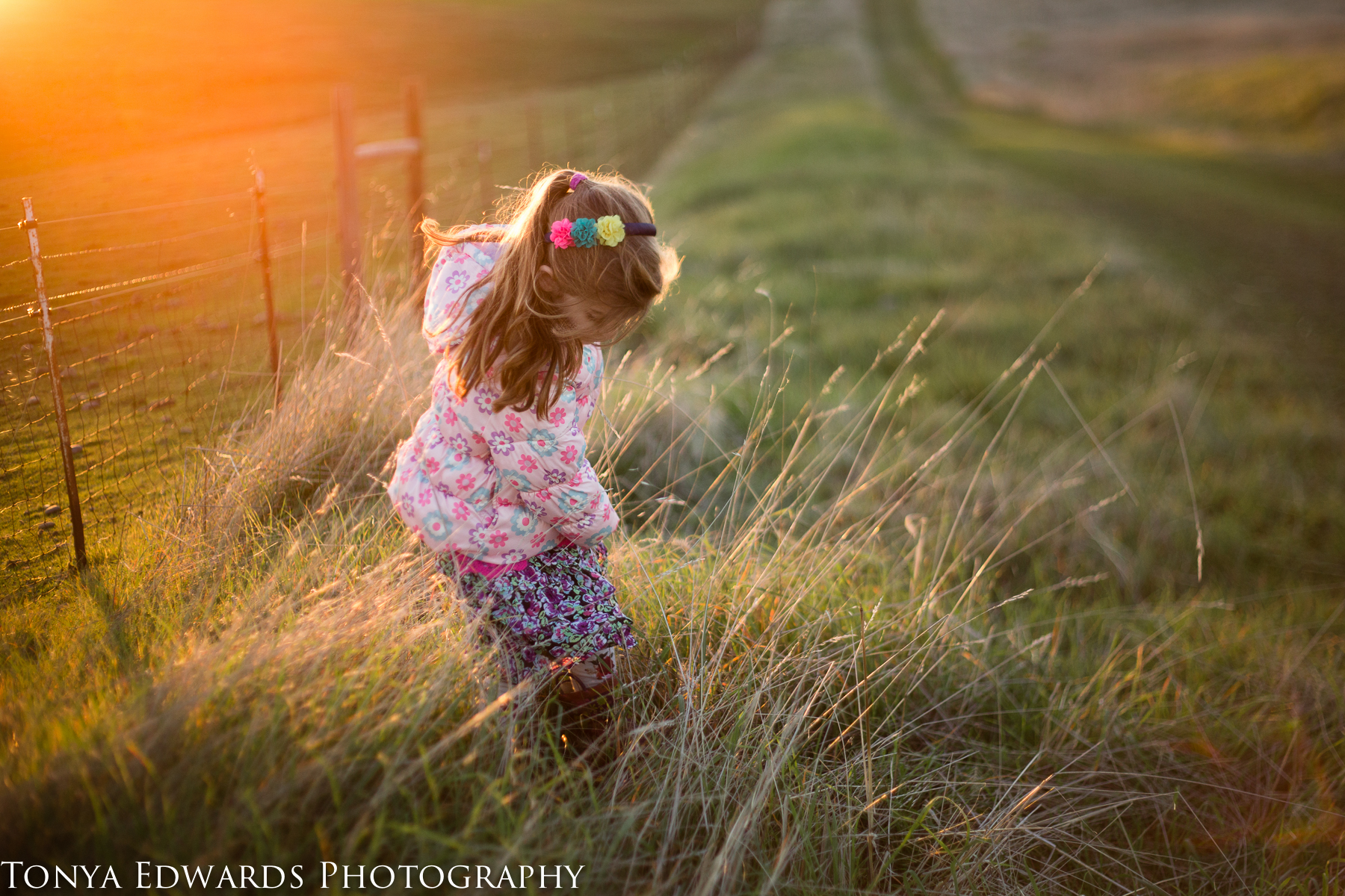 Oroville Photographer   Tonya Edwards   little girl in a pink jacket picking flowers in a field at sunset