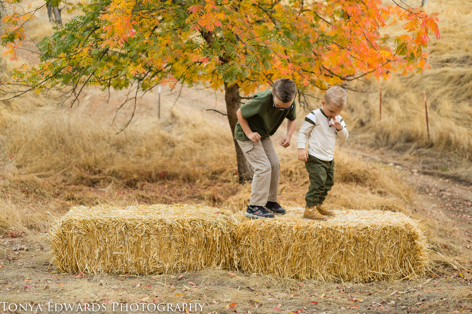 Tonya Edwards | Oroville Family Photographer | brothers jumping off a hay bale with fall leaves