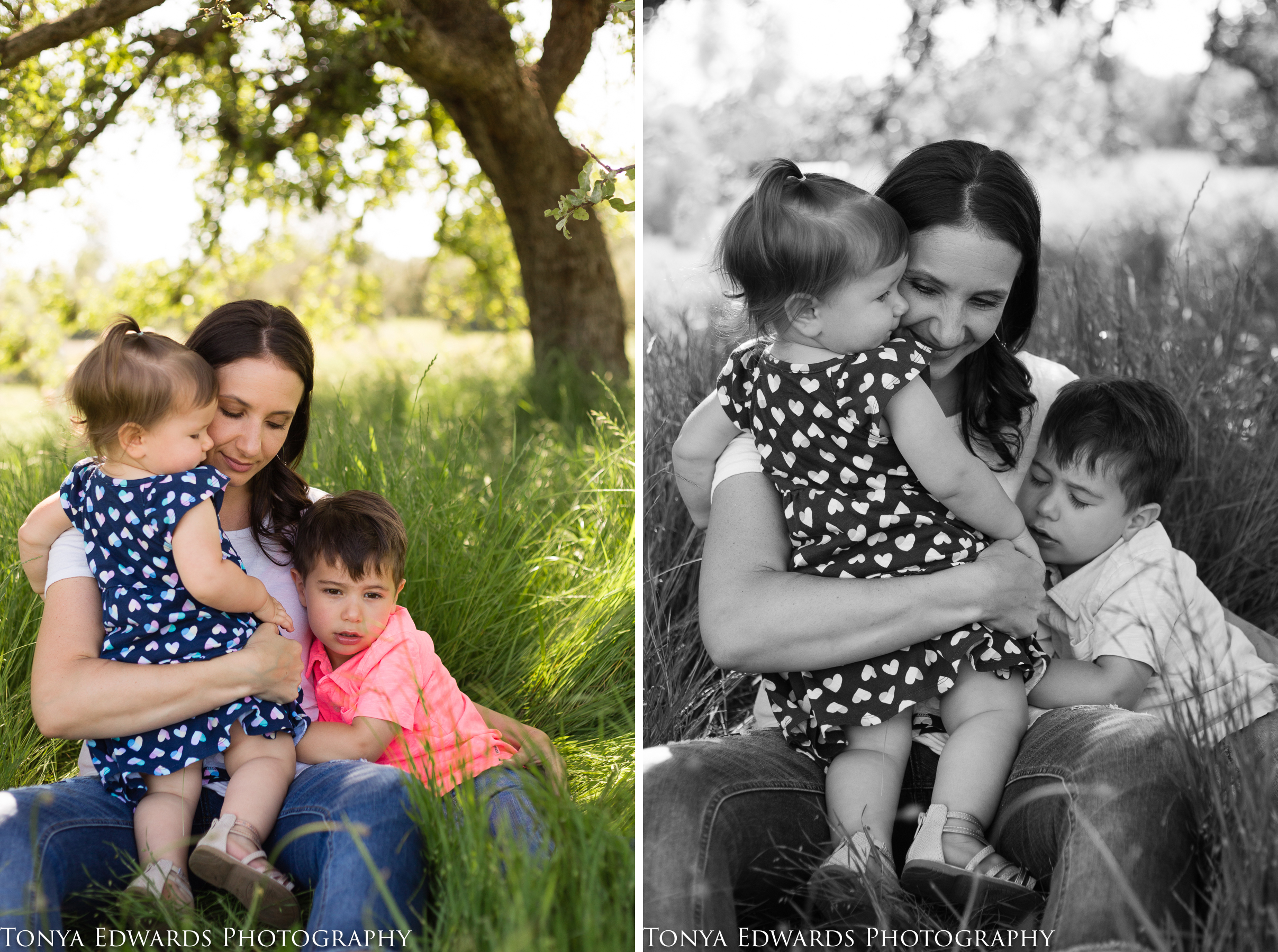 Tonya Edwards | Oroville Photographer | mother son and daughter sitting in long green grass under a tree snuggling
