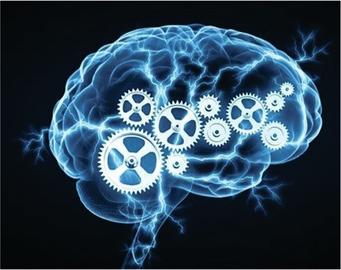 brainworking_1.jpg