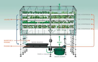 U-Farm_water_loop.png