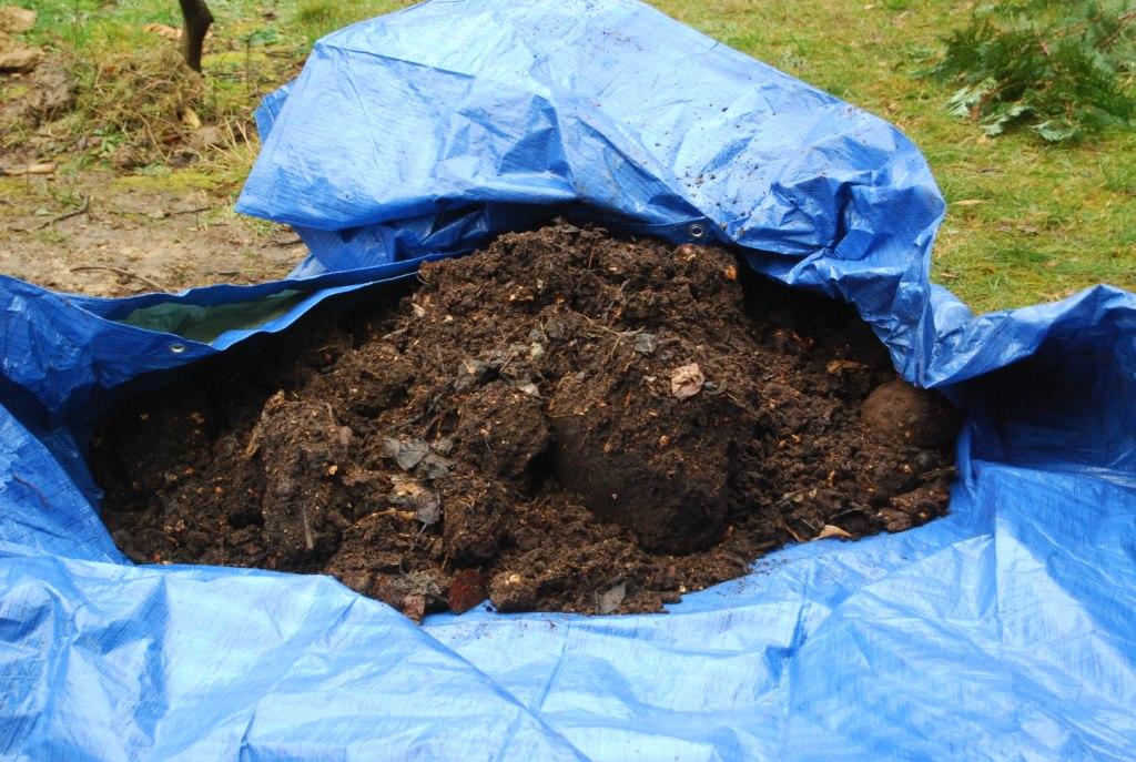 Du compost pour améliorer le sol