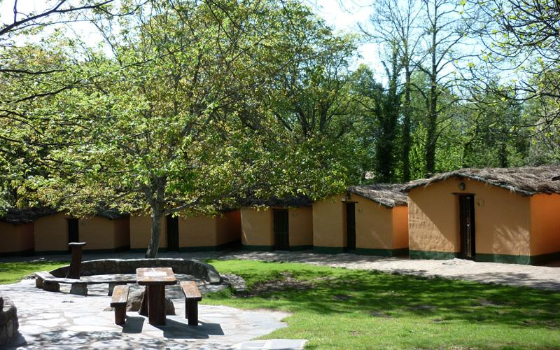 These are the sleeping huts on site. These rooms are included in your retreat-festival and remain a silent space to retreat and relax in. You will share with up to 7 others and the dorms will be organised according to your preference.