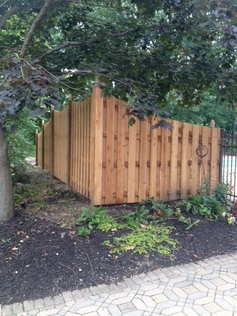 Cedar Privacy.JPG