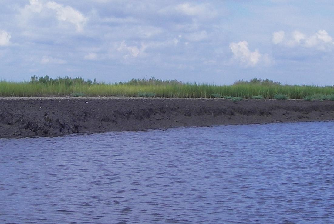 2010_Eroding_Shoreline3.JPG