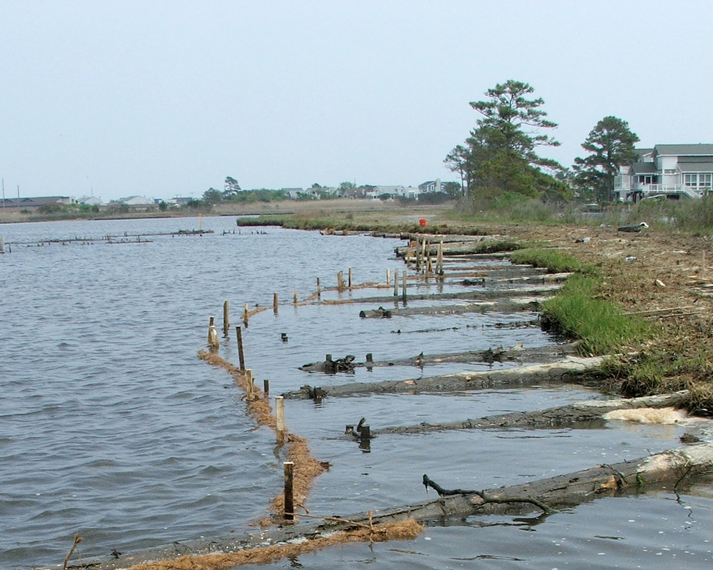 Traditional Living Shoreline