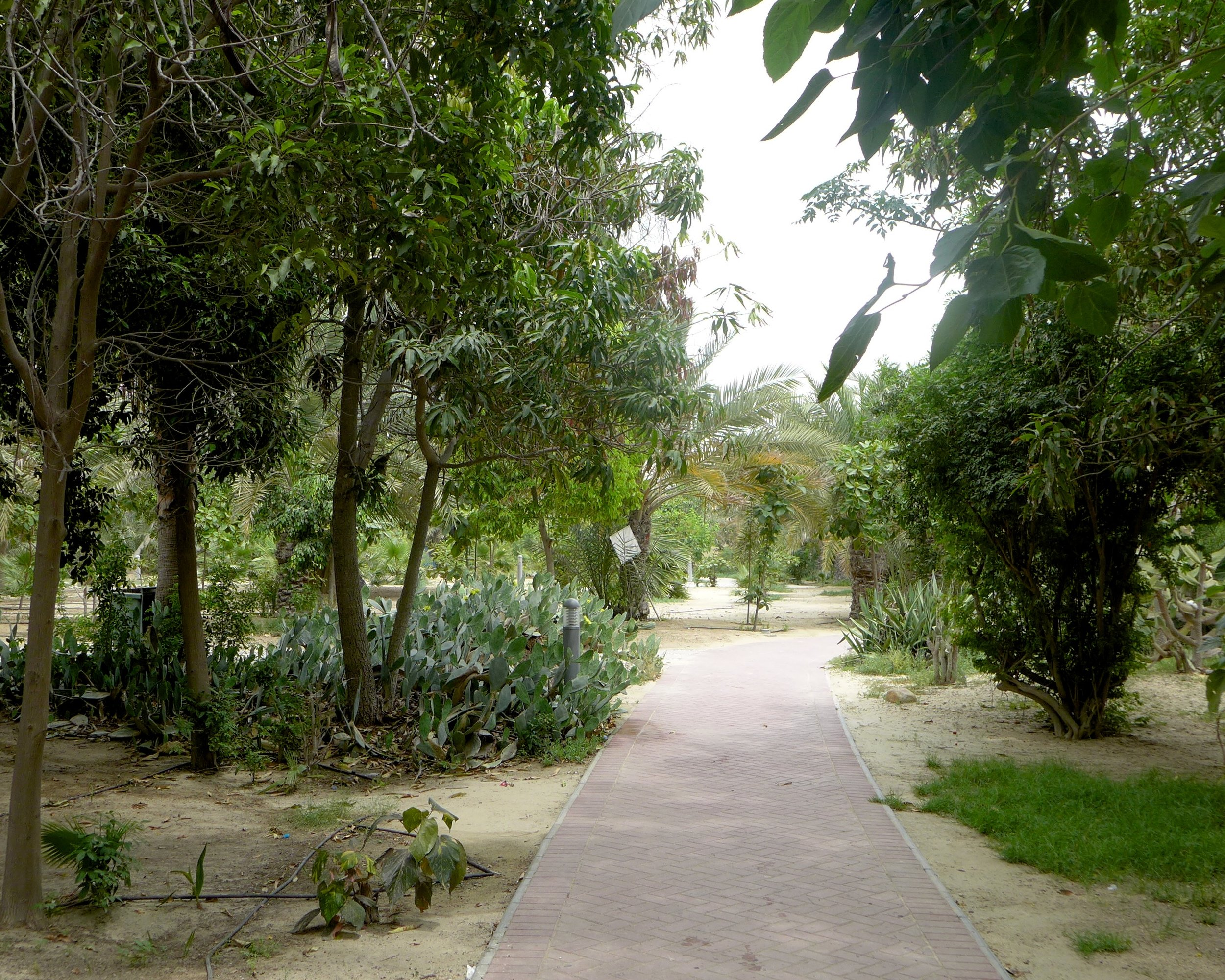 gardens-3.jpg